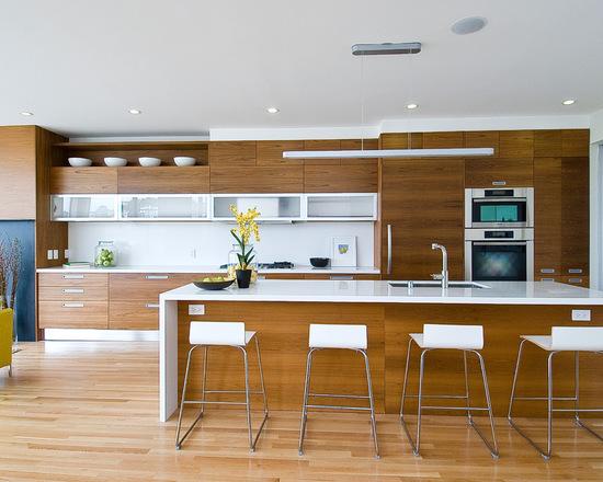 2041c1c5012e390b_9776-w550-h440-b0-p0--modern-kitchen