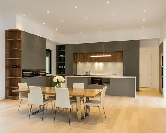 53616b9b06578e8a_4523-w550-h440-b0-p0-q93--modern-kitchen