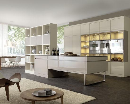 455125910c7a5fa0_1702-w550-h440-b0-p0--modern-kitchen