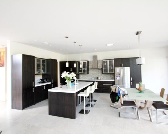 c6f102cd037c3f01_1528-w550-h440-b0-p0--modern-kitchen