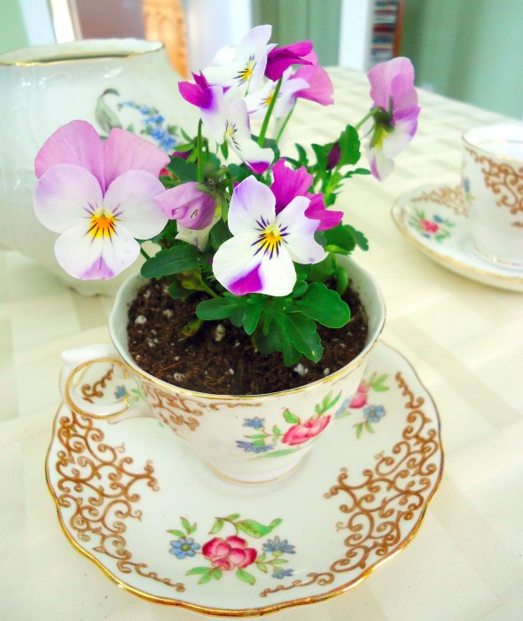 vintage-tea-cup-planters-for-mothers-day-9-1490584120232