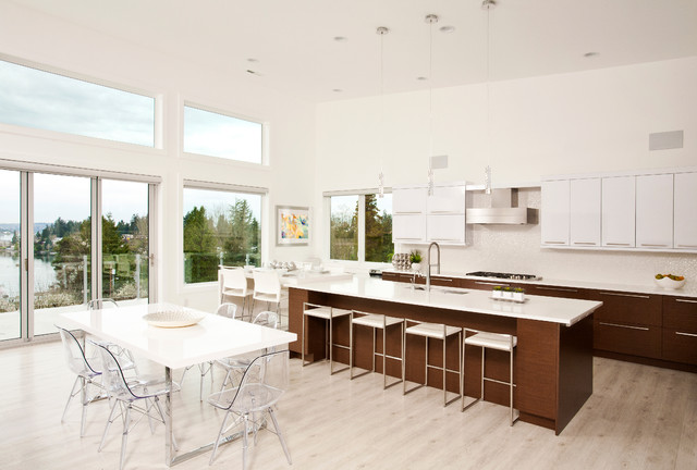 contemporary-kitchen (2)